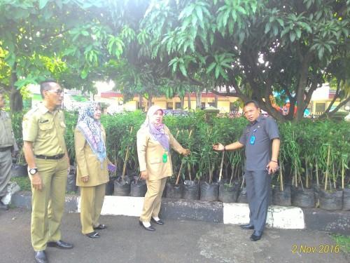 Kecamatan Cibinong Dapat Bantuan Bibit Cabai
